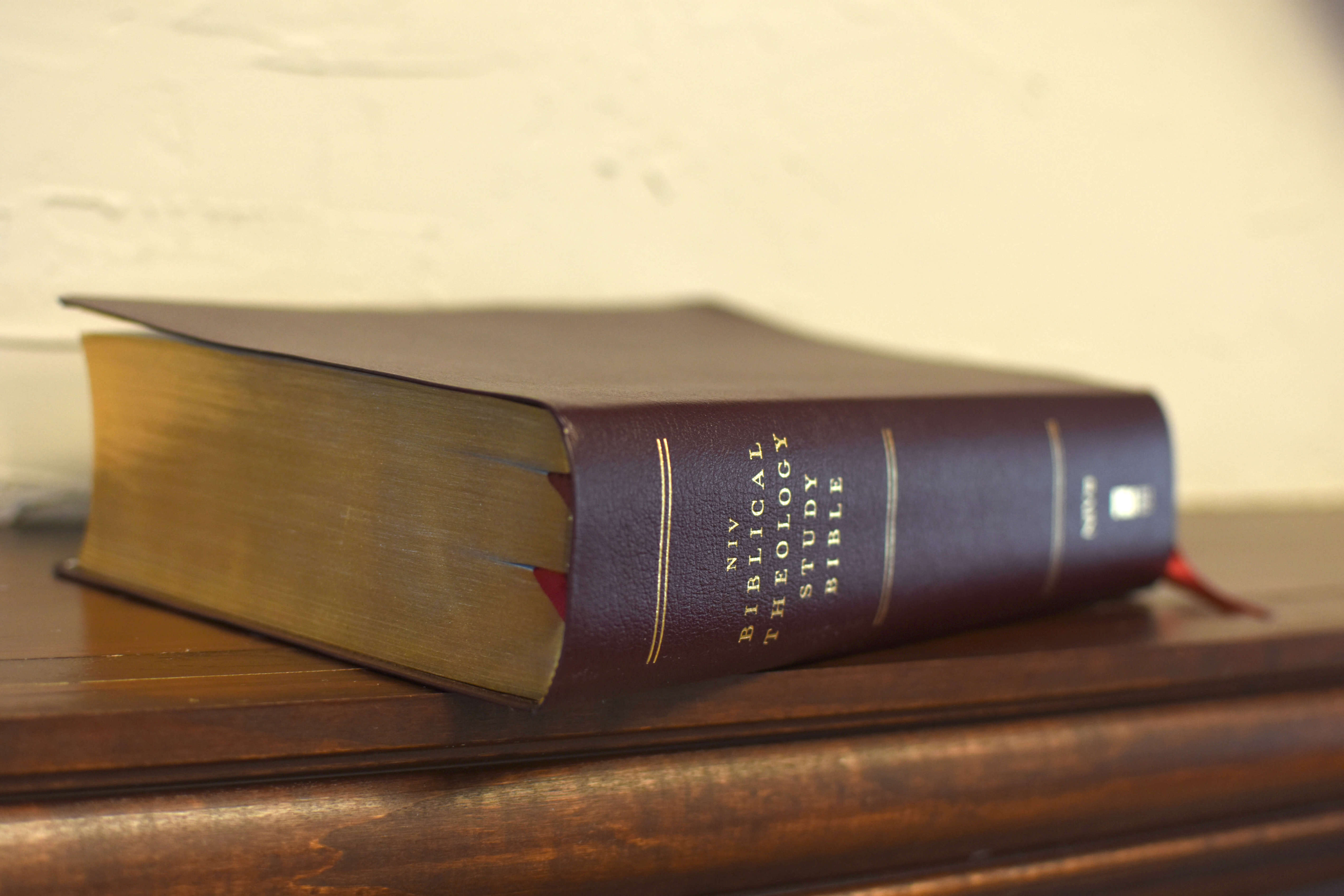 NIV, Biblical Theology Study Bible (Hardcover, Comfort Print)